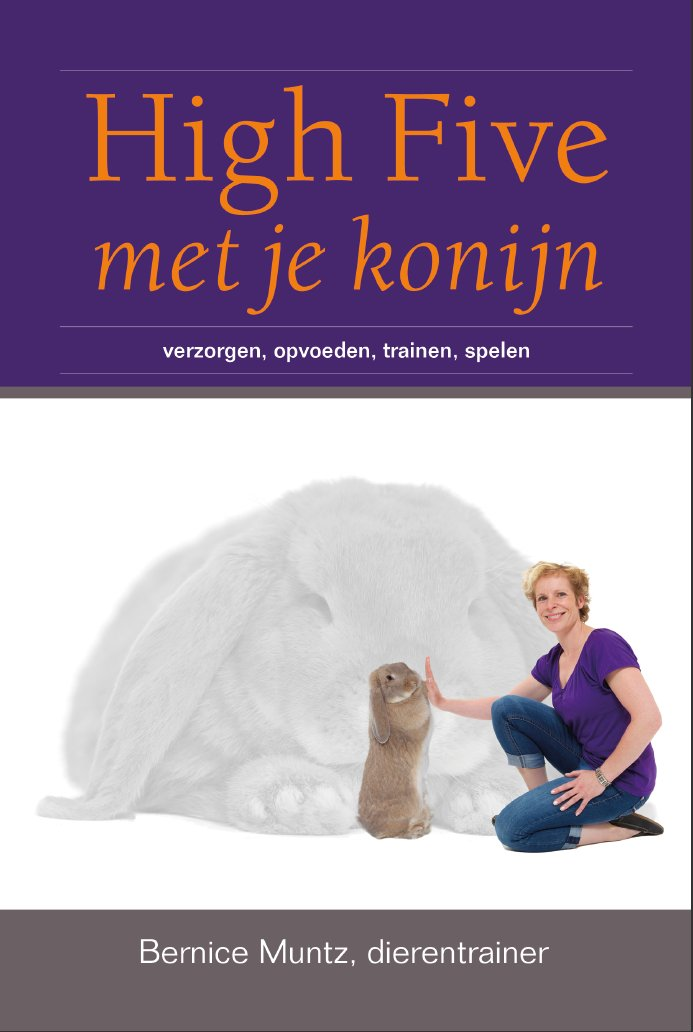 High Five met je Konijn